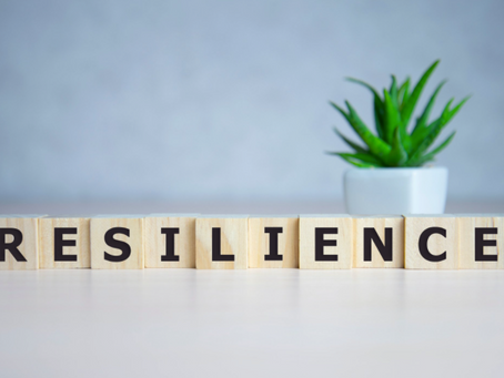 THE KEY TO SUCCESS: RESILIENCE