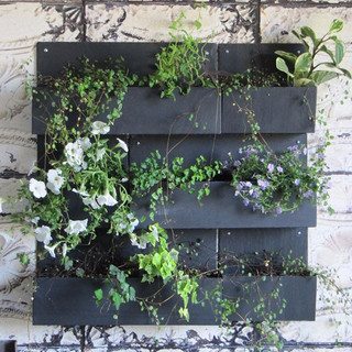 Wall planters in slate,__Jardinières mur