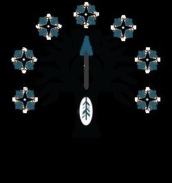 dunedain-logo-transparent