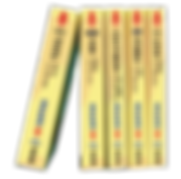 ALTIS,FOCUS,OUTLANDER,IX35,RX350,維修手冊,維修書