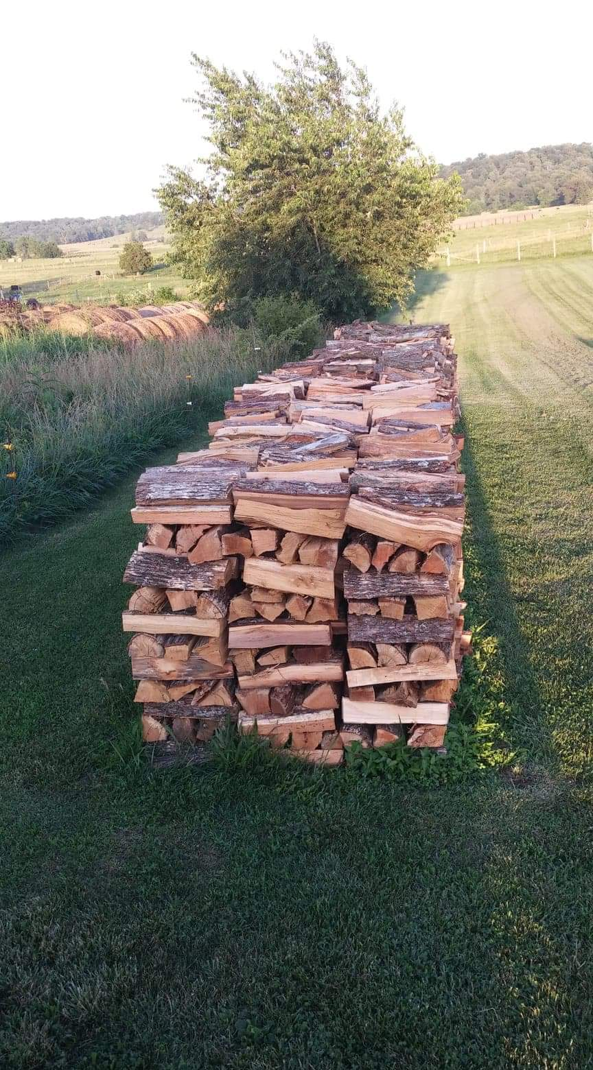 Four Cord Firewood