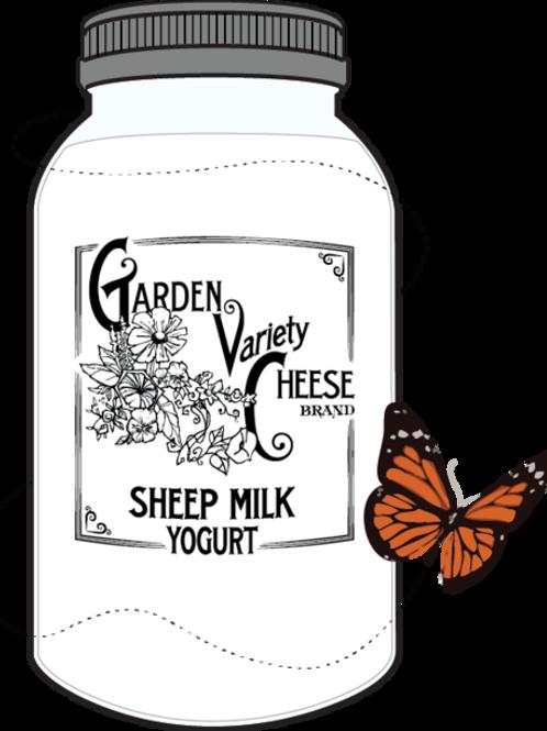 Raw sheep's milk yogurt 1quart