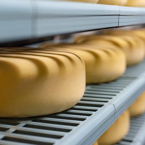 Schoch cheese (Monterey Jack) 1/2 lb