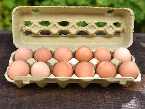 Pasture-raised Eggs (dozen)