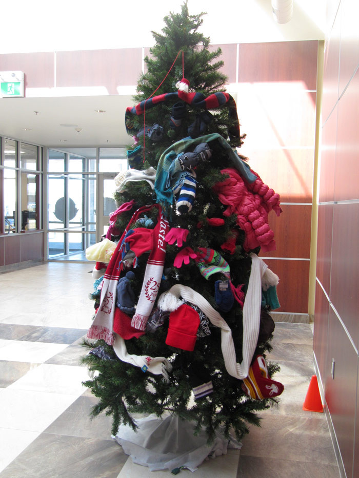 Mitten-Tree-Jan-2017-(4).jpg