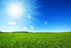 Flatbush Solar