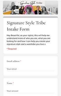Style Intake.jpg