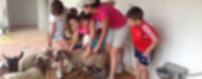 Excursiones Escolares a la Granja Escuela Natural School