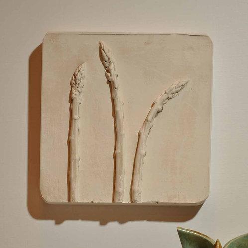 Asparagus (TM094)