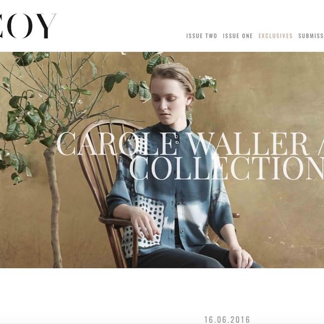 Carole Waller Collection