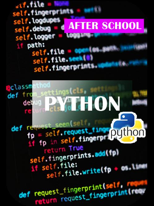 Python Course - Virtual Tech Camp -