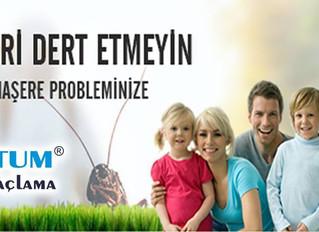 Alanya ilaçlama firmaları - 0242 522 60 06