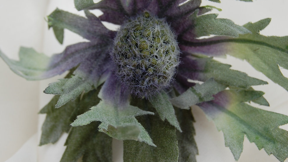 Eryngium (Sea Holly) Thistle Napkin rings-NR002