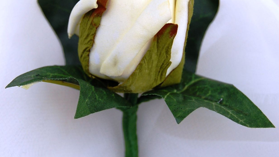 Cream Rose Buttonhole-BH028