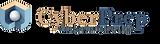 Logo3 CyberPrep.png