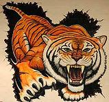 kingsville tiger.jpg