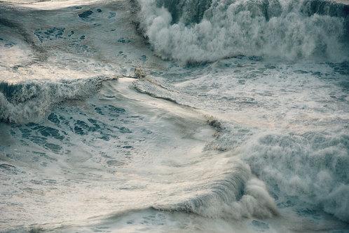 Les Grands Eventails blancs de la Mer insoumise
