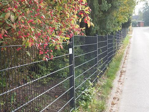 Zäune Tore Gartentor Doppelstabmattenzaun Toranlage Einfahrtstor Hamburg Winsen Seevetal Buchholz Neu Wulmstorf Harburg