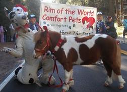 Rim of the World Comfort Pets