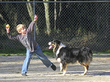 Penn-Valley-Dog-Park-290_edited.jpg