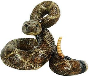 2021 Rattlesnake Avoidance Clinic