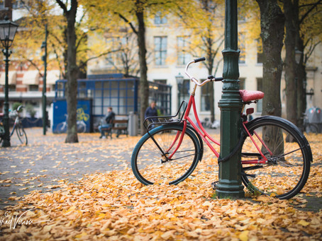 Changing Seasons and Changing Locations: Looking to the Future
