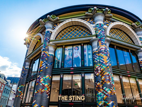 Photo Story: The Sting