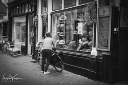 Den Haag: Life, Culture, City