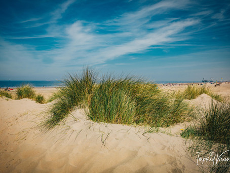 Photo Story: Beaching Afternoon