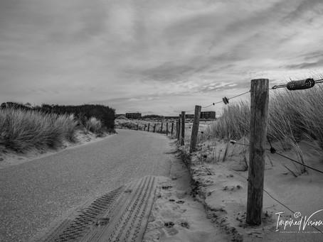 Photo Story: Journey through the Dunes