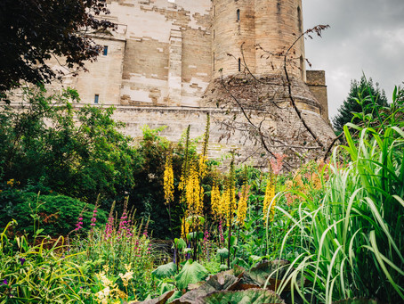 Photo Story: Garden by the Castle