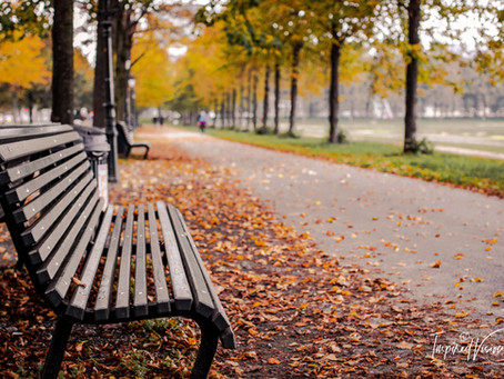 Photo Story: Autumn Moment