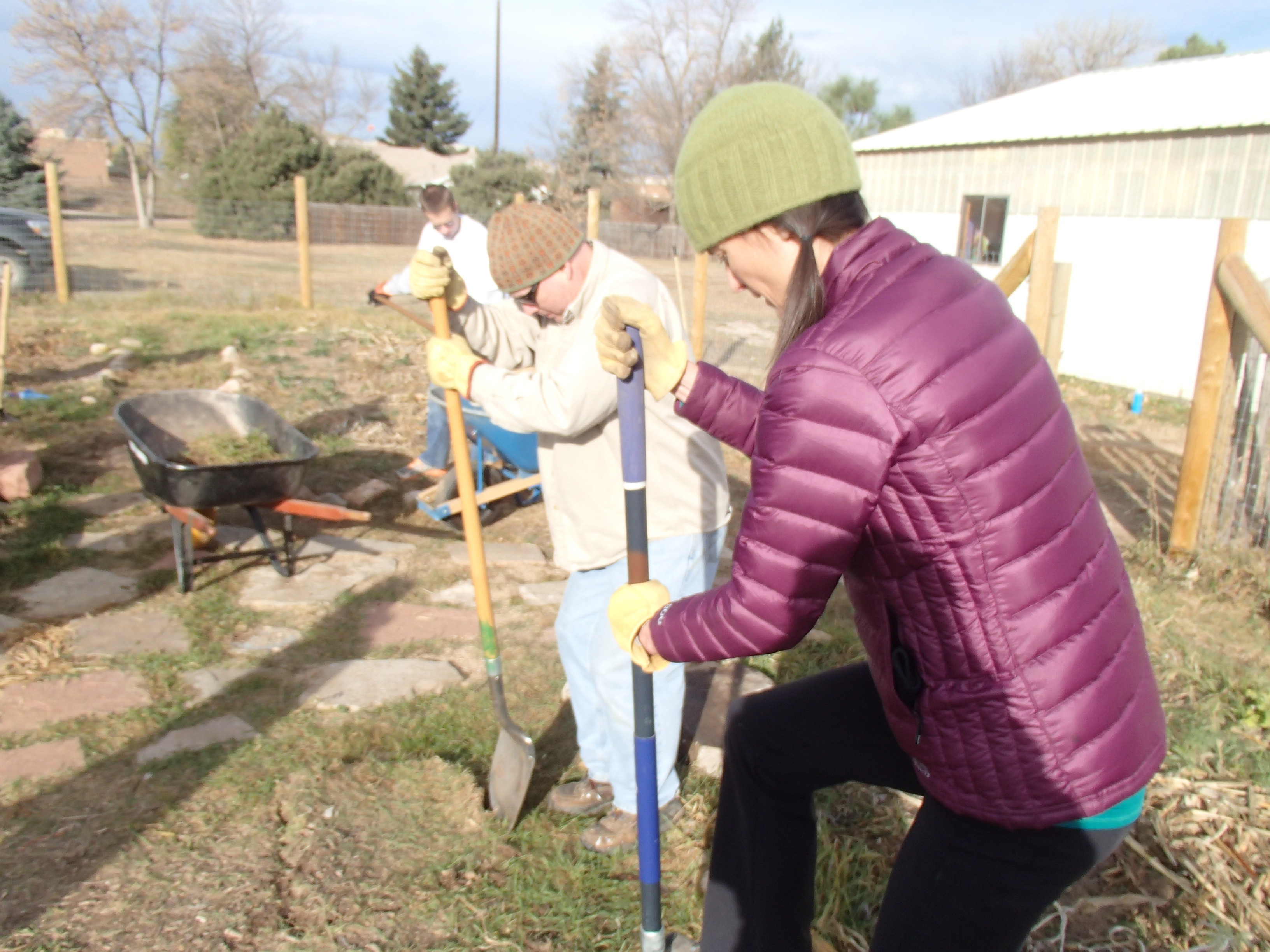 CSU ELC volunteer project 695