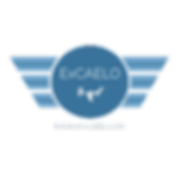 ExCAELOAerial Imaging CAA UK PfAW Approved Drone Operator