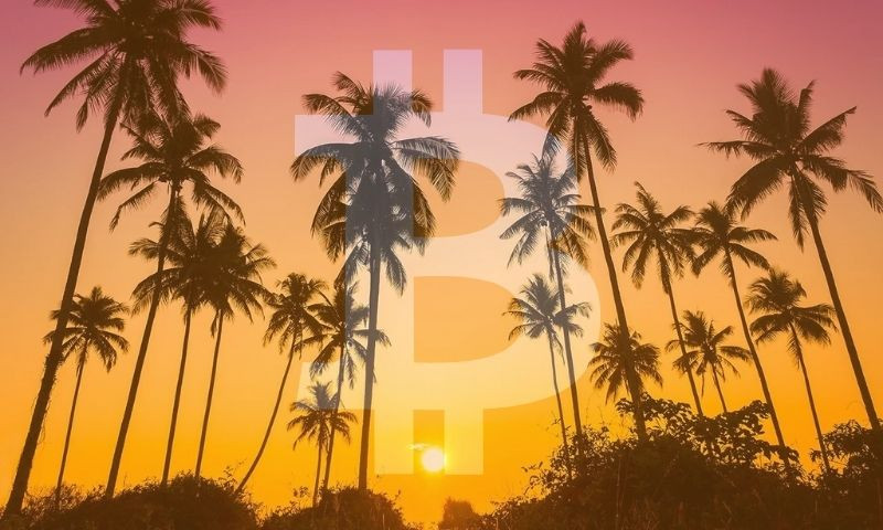 Miami Losing Its Vice And Going All In On Bitcoin