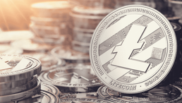 Litecoin's MimbleWimble Code Will Be Ready by Q1 of 2021