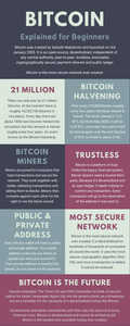 Bitcoin Explained For Beginners (Infographic)