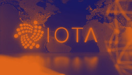 What is the IOTA Academy?