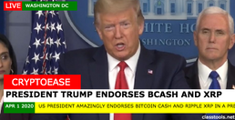 President Trump Bullish on BCH and XRP