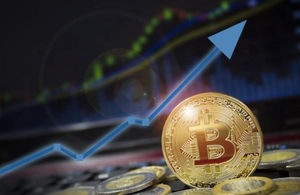 The Bitcoin should go up in the 12 months after the Bitcoin halving