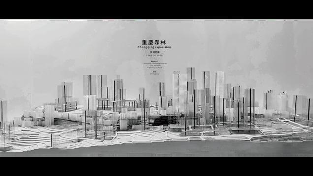 重慶森林 Chongqing Expression/迷城記錄 Stray Records