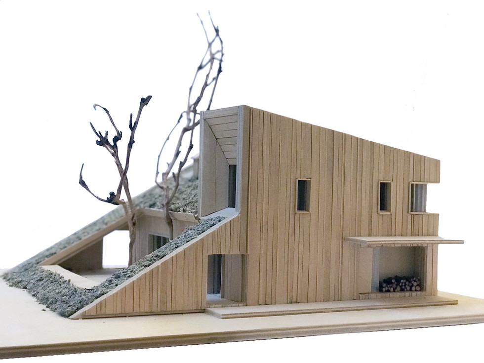 hill-house-model_3-_-by-snegiri-ar
