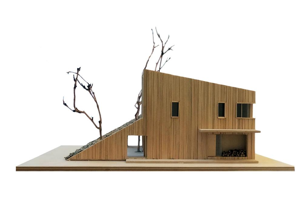 hill-house-model_2-_-by-snegiri-ar