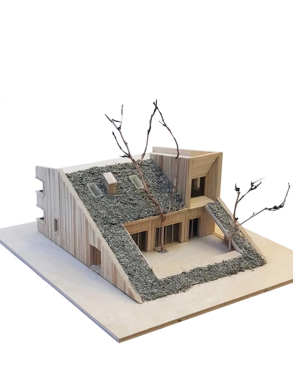 hill-house-model_1-_-by-snegiri-ar