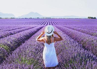 lavender-small.jpg