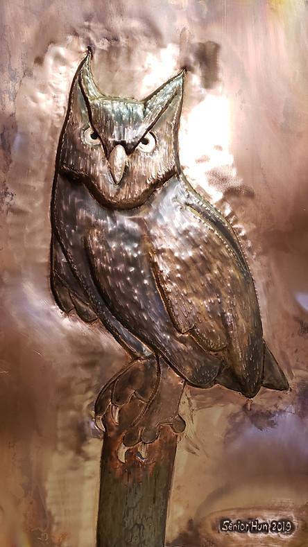 Woods Owl