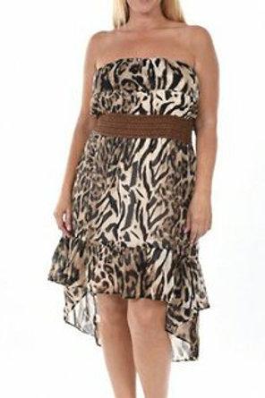 Hi-Lo Ruffled Neck and Hem Dress