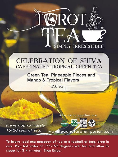 Celebration of Shiva