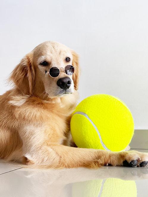(Pre-order) XXL Tennis Ball
