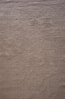 Beaver Carpet